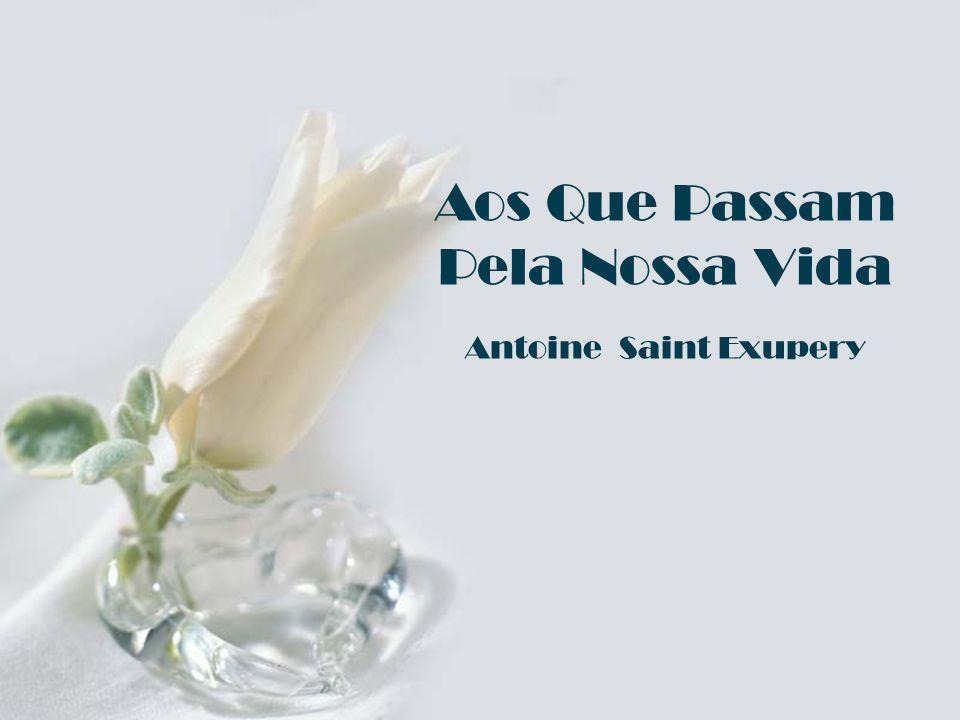 Aos Que Passam Pela Nossa Vida Antoine Saint Exupery