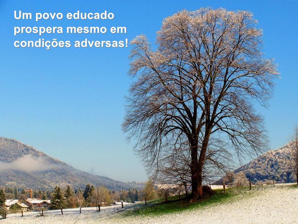 Um povo educado prospera mesmo em condições adversas!