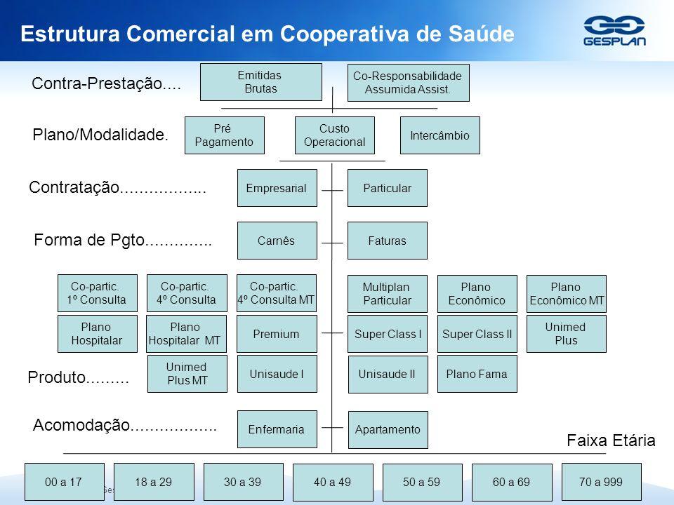 Estrutura Comercial em Cooperativa de Saúde