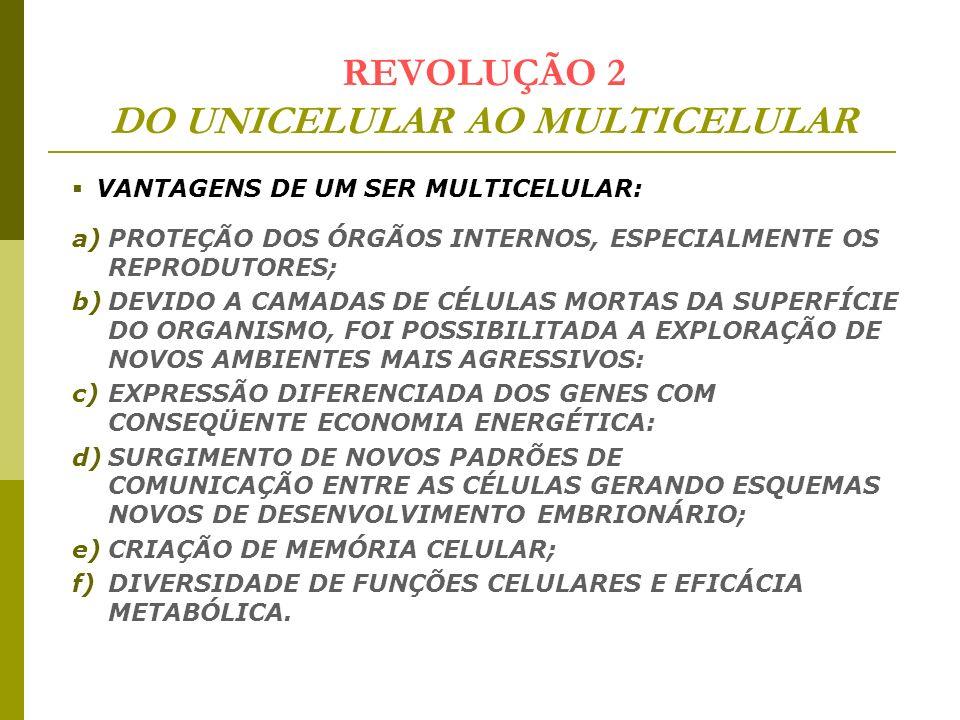 REVOLUÇÃO 2 DO UNICELULAR AO MULTICELULAR