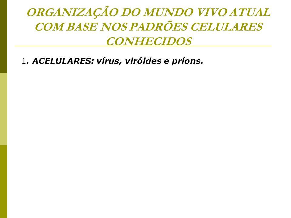 ORGANIZAÇÃO DO MUNDO VIVO ATUAL COM BASE NOS PADRÕES CELULARES CONHECIDOS