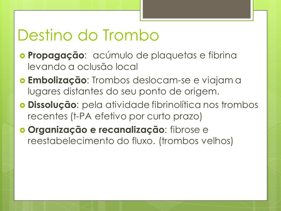 Destino do Trombo Propagação: acúmulo de plaquetas e fibrina levando a oclusão local.