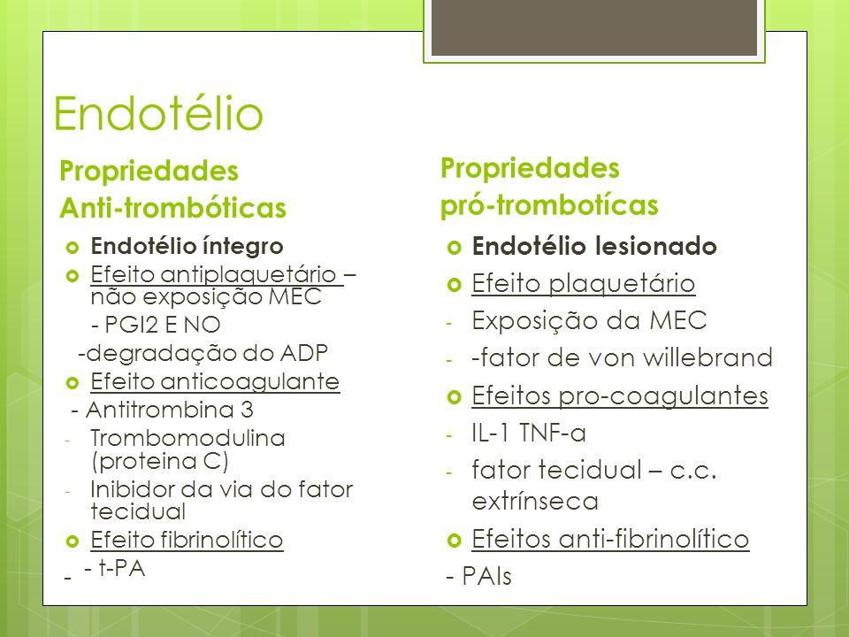 Endotélio Propriedades Propriedades Anti-trombóticas pró-trombotícas