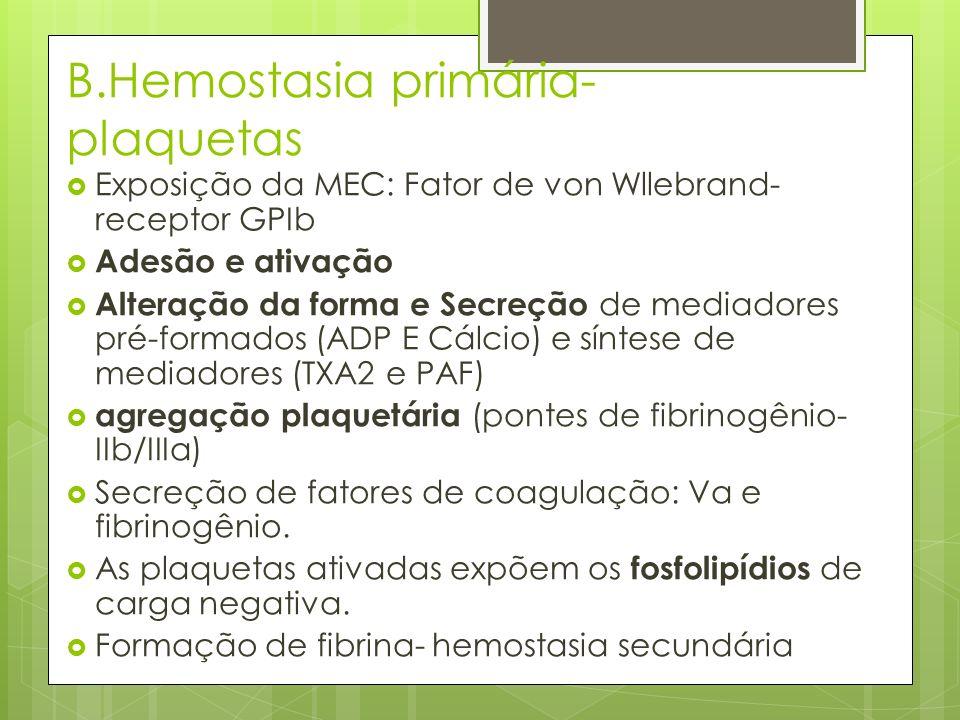 B.Hemostasia primária- plaquetas