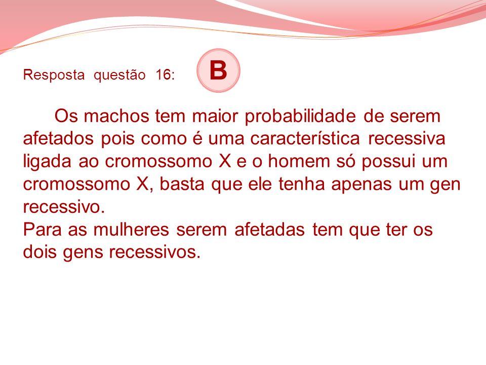 Resposta questão 16: B Os machos tem maior probabilidade de serem afetados pois como é uma característica recessiva ligada ao cromossomo X e o homem só possui um cromossomo X, basta que ele tenha apenas um gen recessivo.