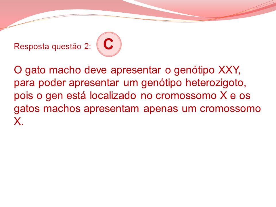 Resposta questão 2: C O gato macho deve apresentar o genótipo XXY, para poder apresentar um genótipo heterozigoto, pois o gen está localizado no cromossomo X e os gatos machos apresentam apenas um cromossomo X.