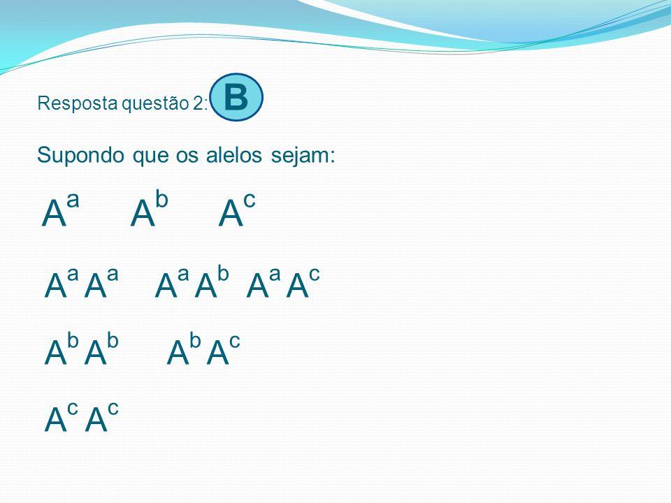 Resposta questão 2: B Supondo que os alelos sejam: Aa Ab Ac Aa Aa Aa Ab Aa Ac Ab Ab Ab Ac Ac Ac