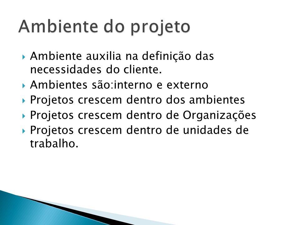 Ambiente do projeto Ambiente auxilia na definição das necessidades do cliente. Ambientes são:interno e externo.
