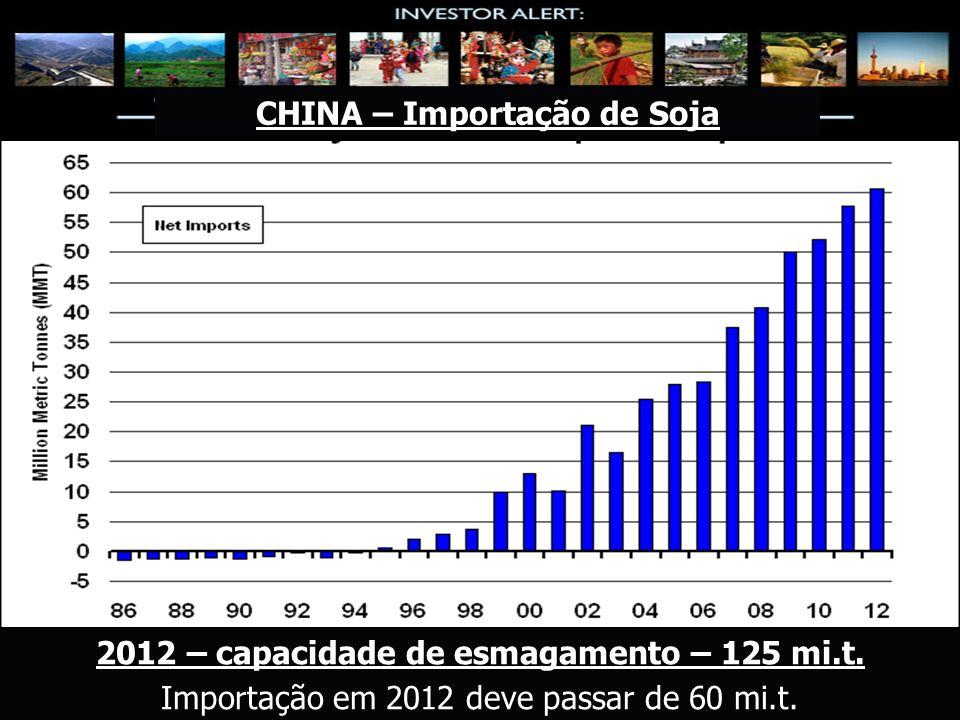 CHINA – Importação de Soja