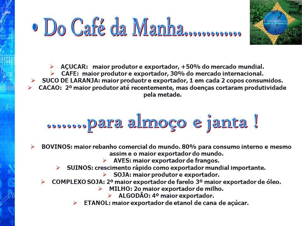 Do Café da Manha............. ........para almoço e janta !