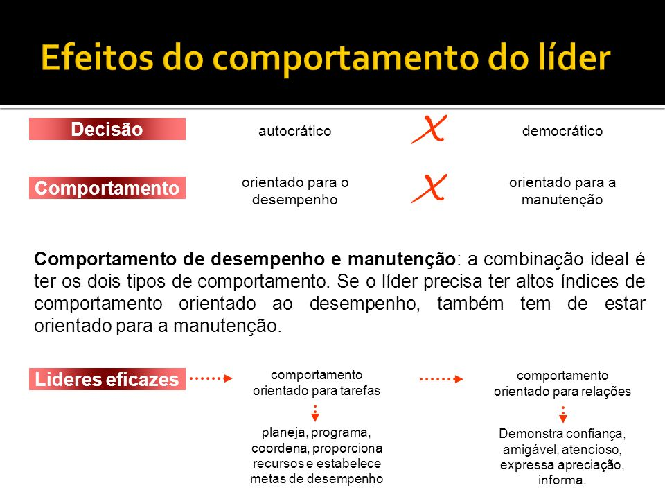Efeitos do comportamento do líder