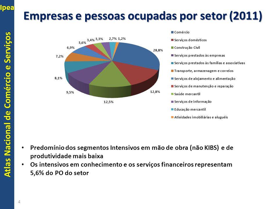 Empresas e pessoas ocupadas por setor (2011)
