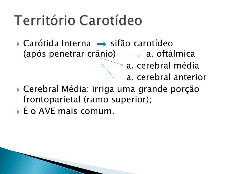 Território Carotídeo Carótida Interna sifão carotídeo (após penetrar crânio) a. oftálmica.