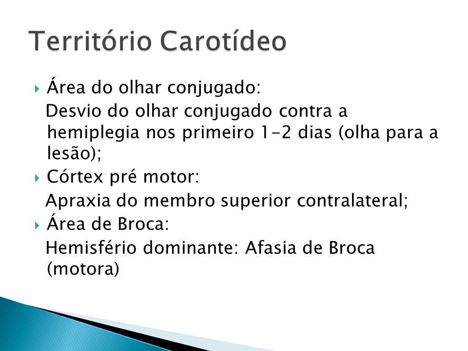 Território Carotídeo Área do olhar conjugado: