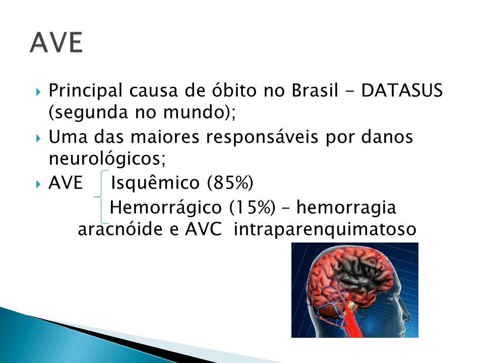 AVE Principal causa de óbito no Brasil - DATASUS (segunda no mundo);