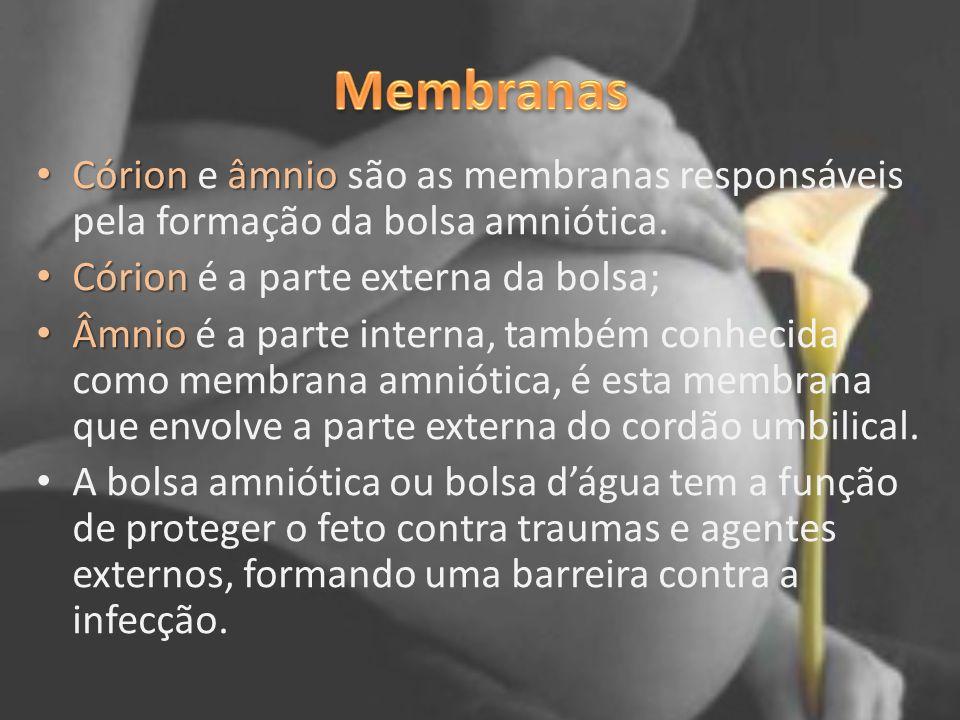 Membranas Córion e âmnio são as membranas responsáveis pela formação da bolsa amniótica. Córion é a parte externa da bolsa;