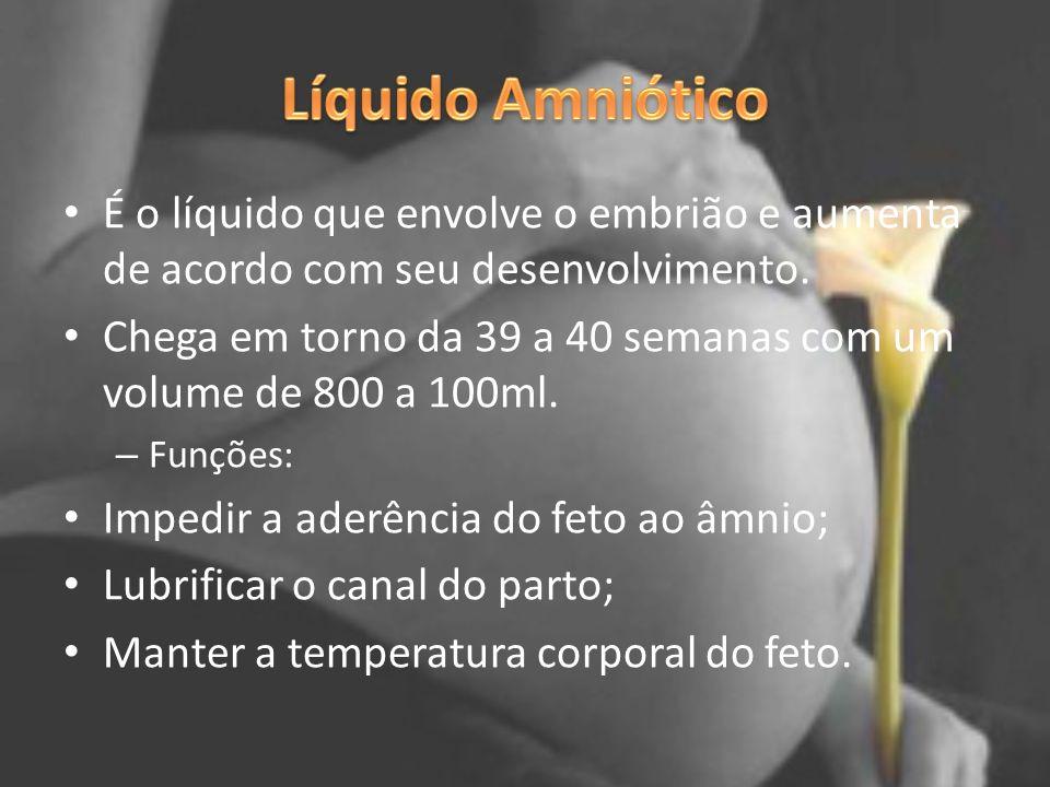 Líquido Amniótico É o líquido que envolve o embrião e aumenta de acordo com seu desenvolvimento.