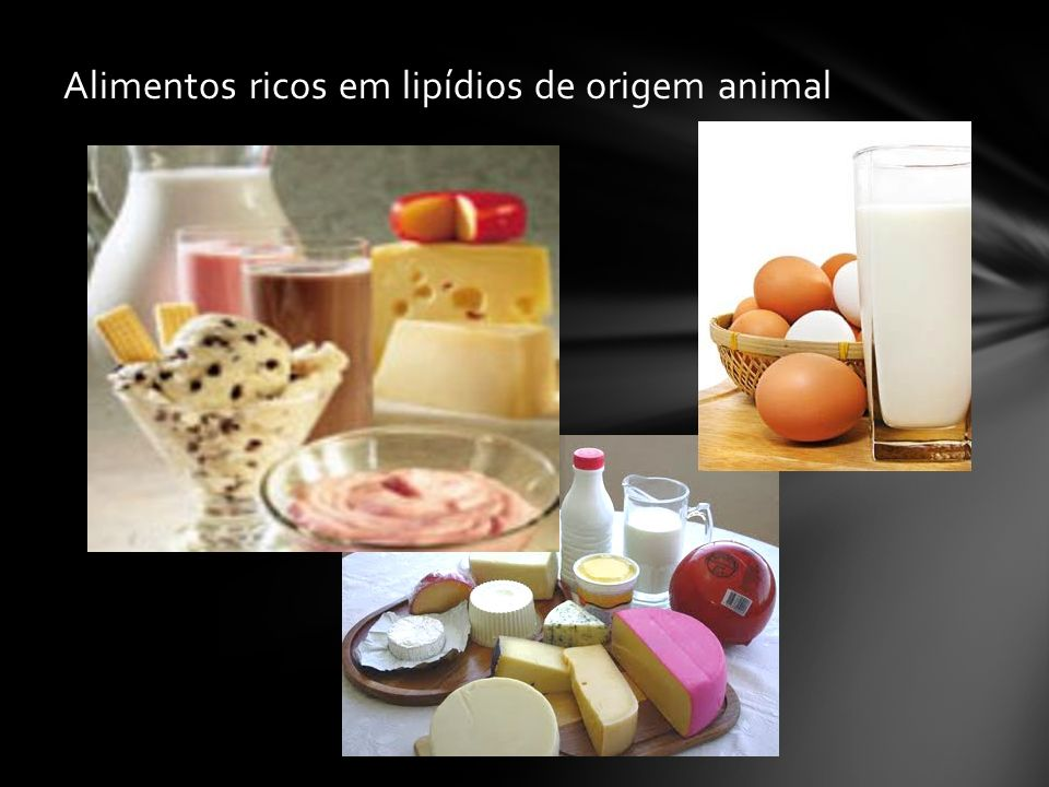 Alimentos ricos em lipídios de origem animal