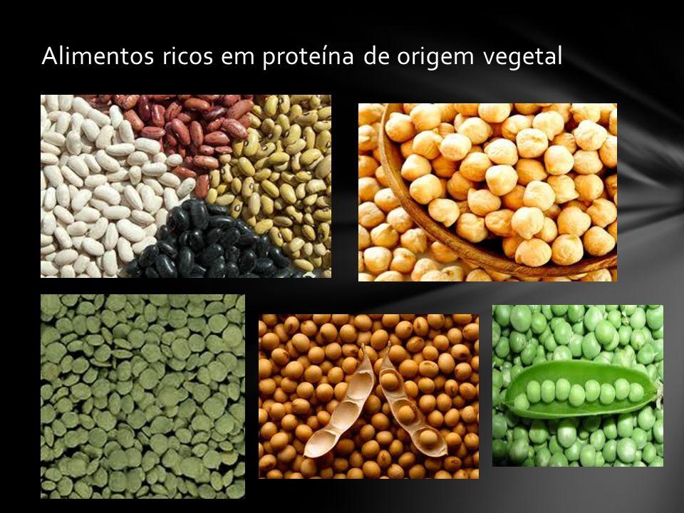 Alimentos ricos em proteína de origem vegetal