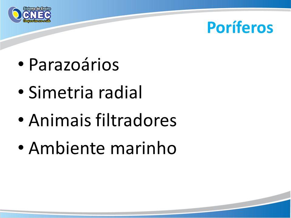 Parazoários Simetria radial Animais filtradores Ambiente marinho