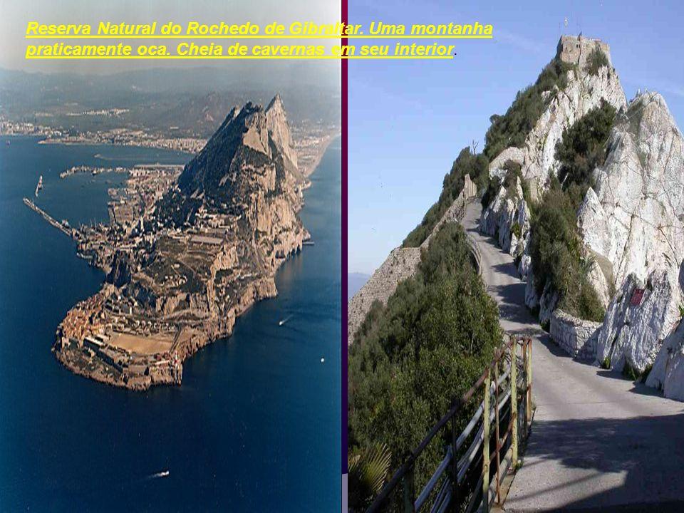 Reserva Natural do Rochedo de Gibraltar. Uma montanha praticamente oca