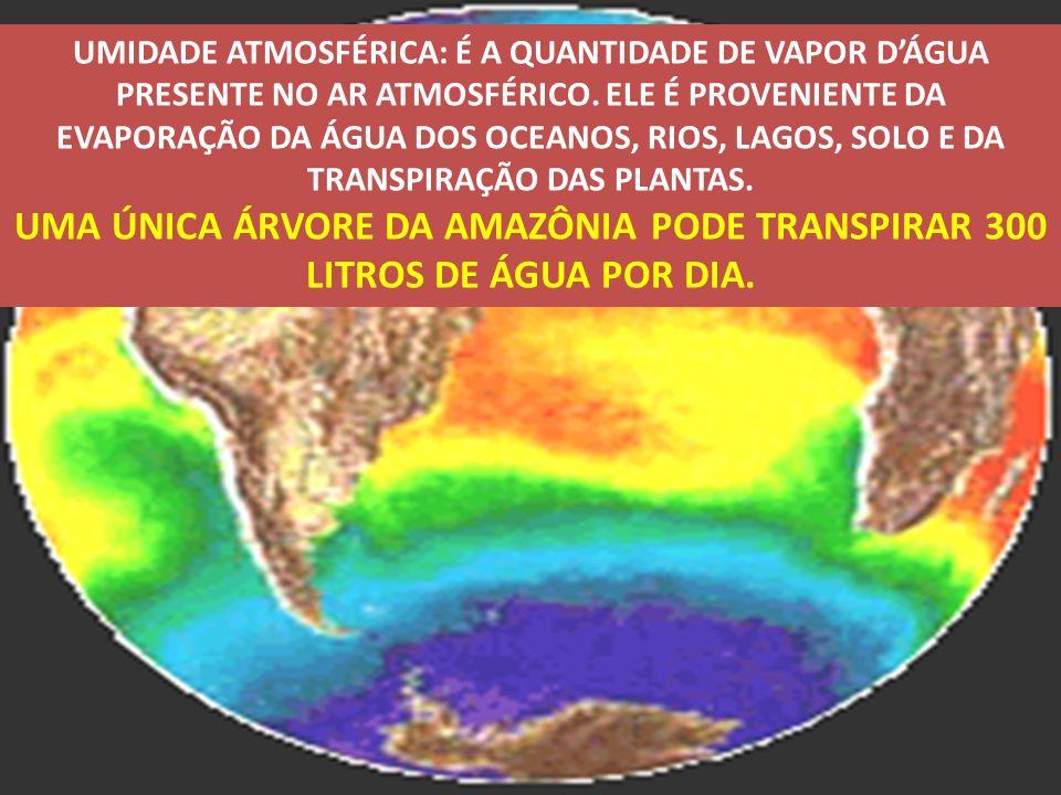 UMIDADE ATMOSFÉRICA: É A QUANTIDADE DE VAPOR D'ÁGUA PRESENTE NO AR ATMOSFÉRICO. ELE É PROVENIENTE DA EVAPORAÇÃO DA ÁGUA DOS OCEANOS, RIOS, LAGOS, SOLO E DA TRANSPIRAÇÃO DAS PLANTAS.