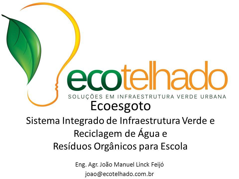 Eng. Agr. João Manuel Linck Feijó