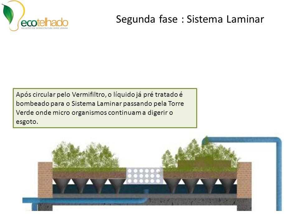 Segunda fase : Sistema Laminar