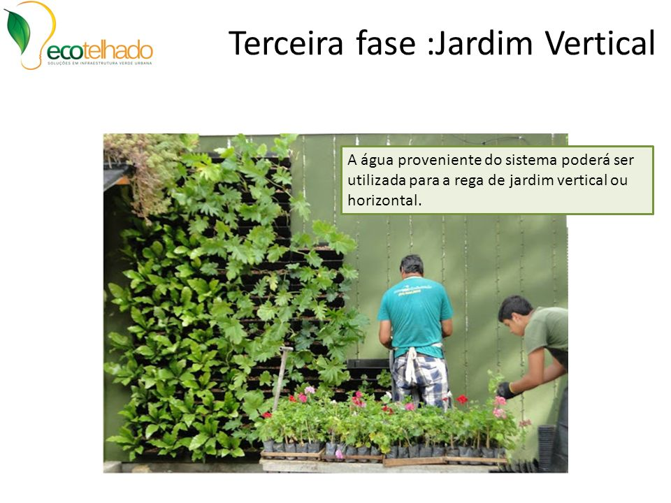 Terceira fase :Jardim Vertical