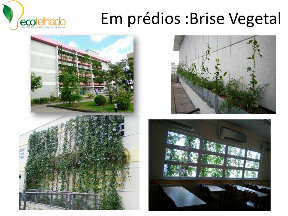 Em prédios :Brise Vegetal