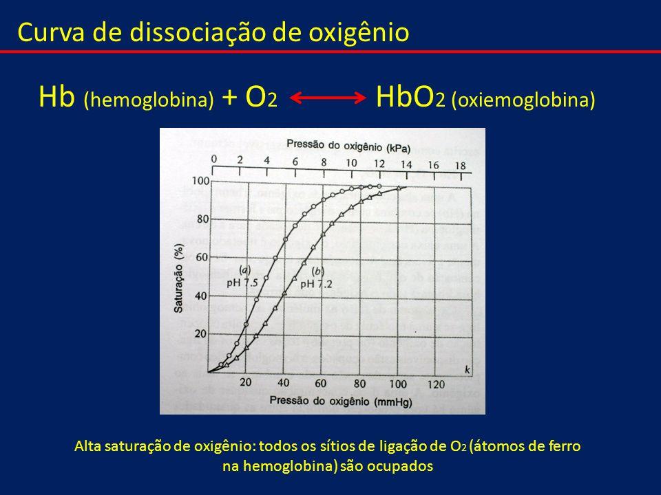 Hb (hemoglobina) + O2 HbO2 (oxiemoglobina)