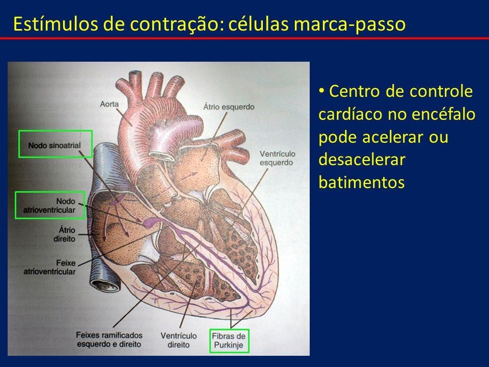 Estímulos de contração: células marca-passo