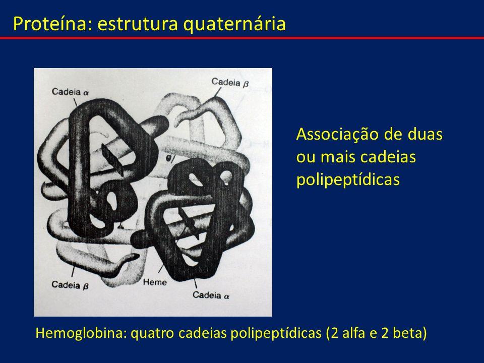 Proteína: estrutura quaternária