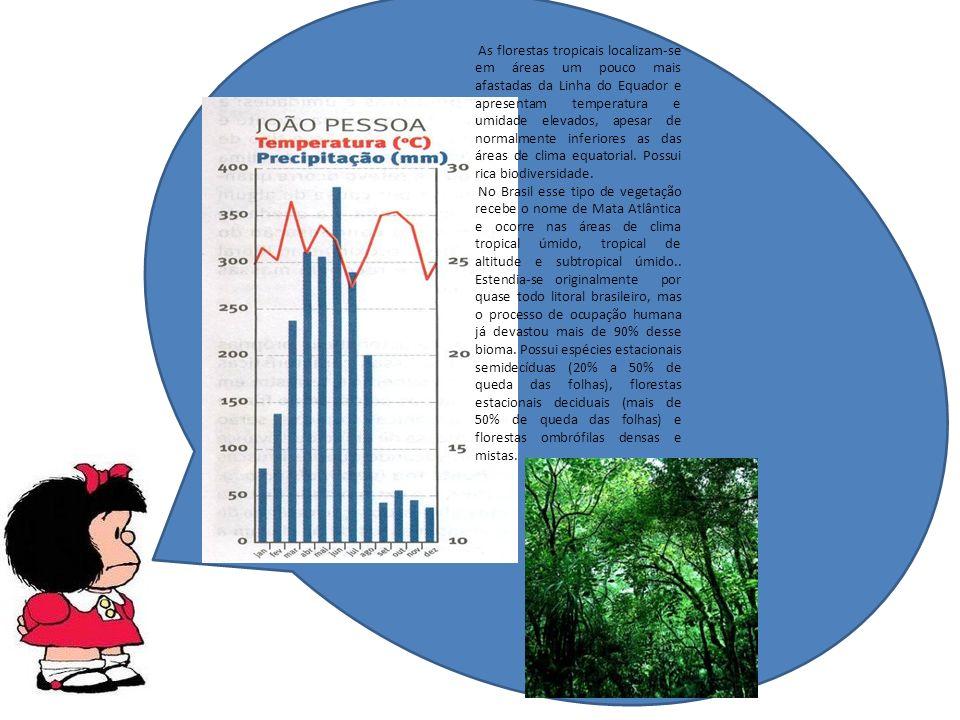 As florestas tropicais localizam-se em áreas um pouco mais afastadas da Linha do Equador e apresentam temperatura e umidade elevados, apesar de normalmente inferiores as das áreas de clima equatorial. Possui rica biodiversidade.