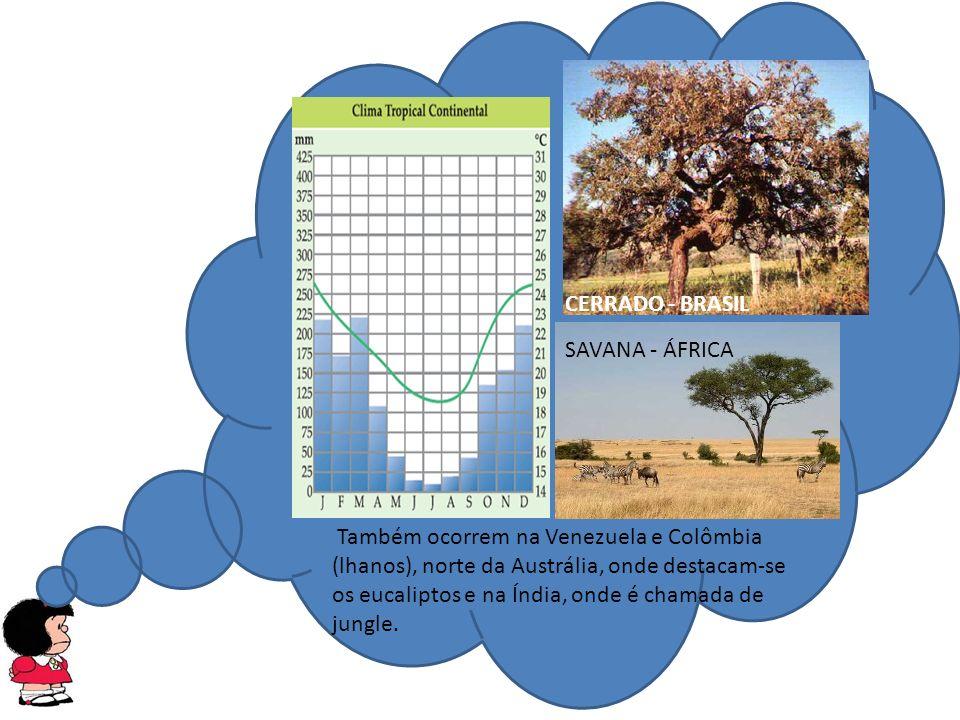 CERRADO - BRASIL SAVANA - ÁFRICA.