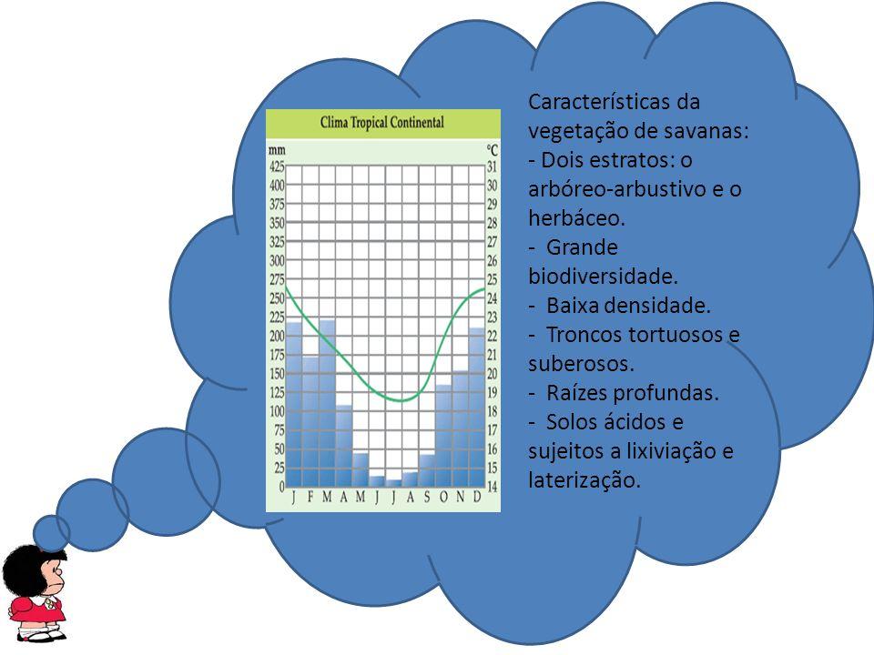 Características da vegetação de savanas: