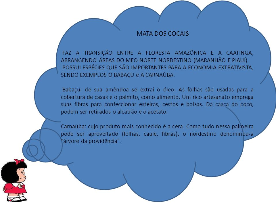 MATA DOS COCAIS FAZ A TRANSIÇÃO ENTRE A FLORESTA AMAZÔNICA E A CAATINGA, ABRANGENDO ÁREAS DO MEO-NORTE NORDESTINO (MARANHÃO E PIAUÍ).