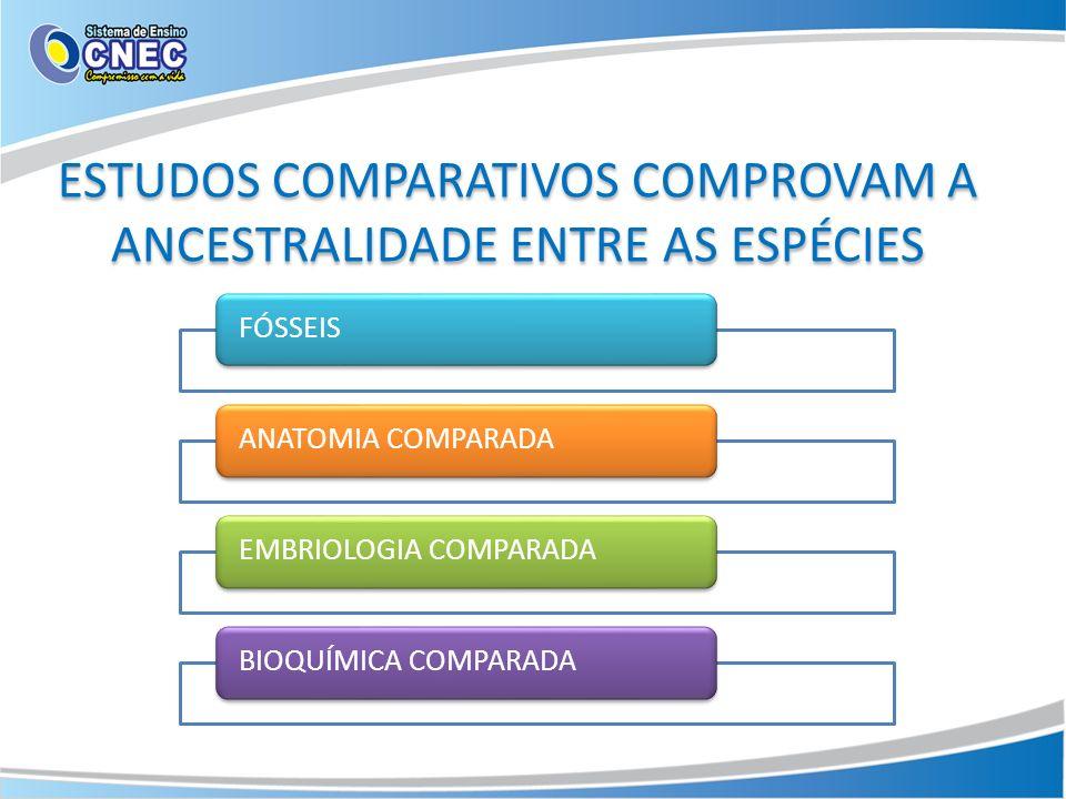 ESTUDOS COMPARATIVOS COMPROVAM A ANCESTRALIDADE ENTRE AS ESPÉCIES