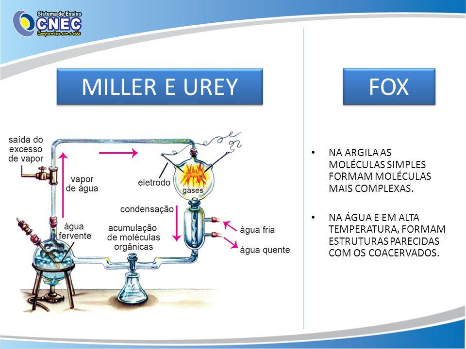 MILLER E UREY FOX. NA ARGILA AS MOLÉCULAS SIMPLES FORMAM MOLÉCULAS MAIS COMPLEXAS.