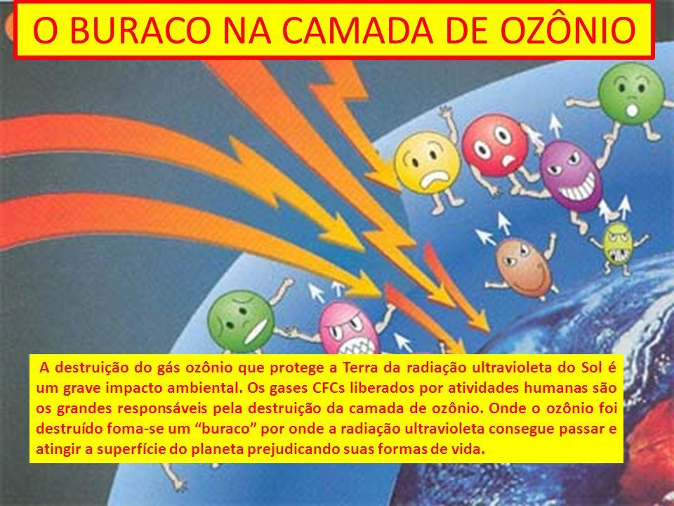 O BURACO NA CAMADA DE OZÔNIO