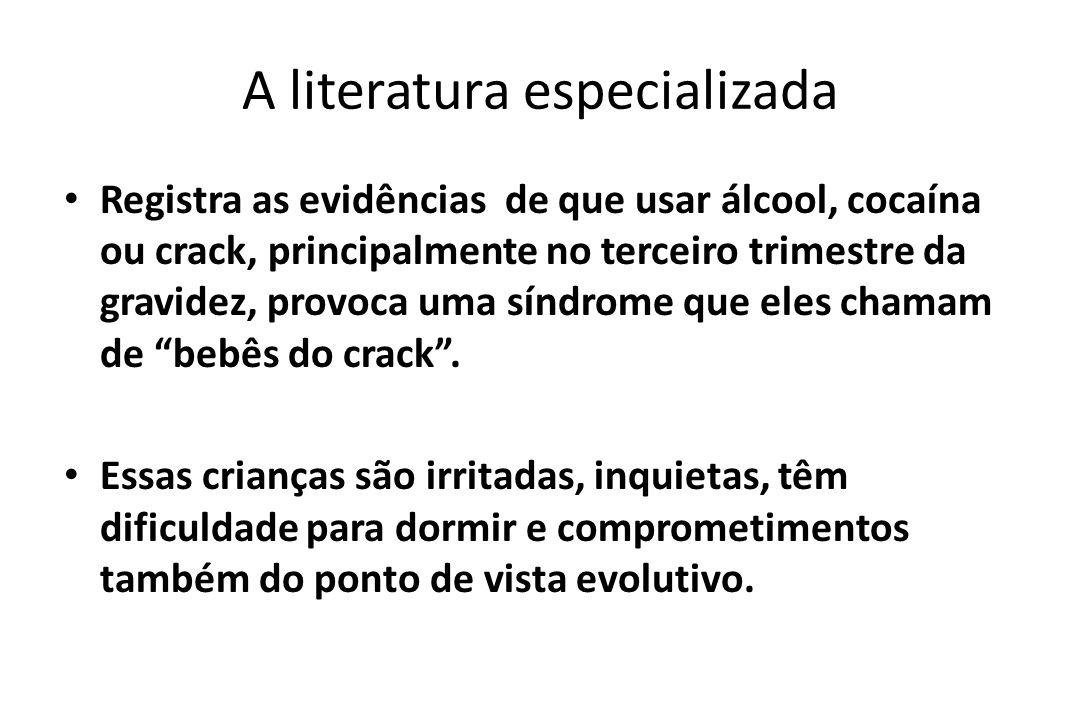 A literatura especializada