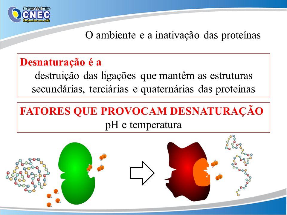 O ambiente e a inativação das proteínas