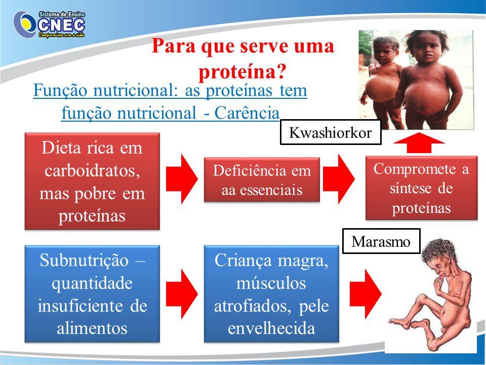 Para que serve uma proteína