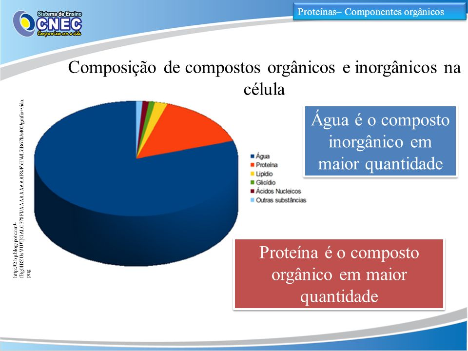 Composição de compostos orgânicos e inorgânicos na célula