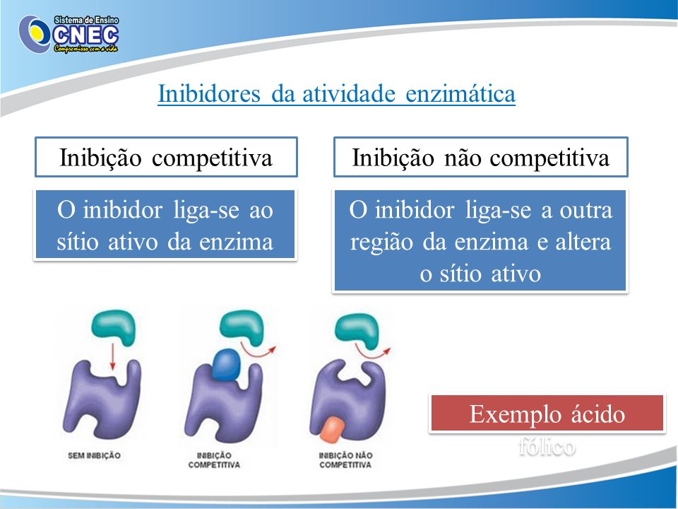 Inibidores da atividade enzimática