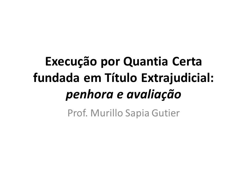 Prof. Murillo Sapia Gutier