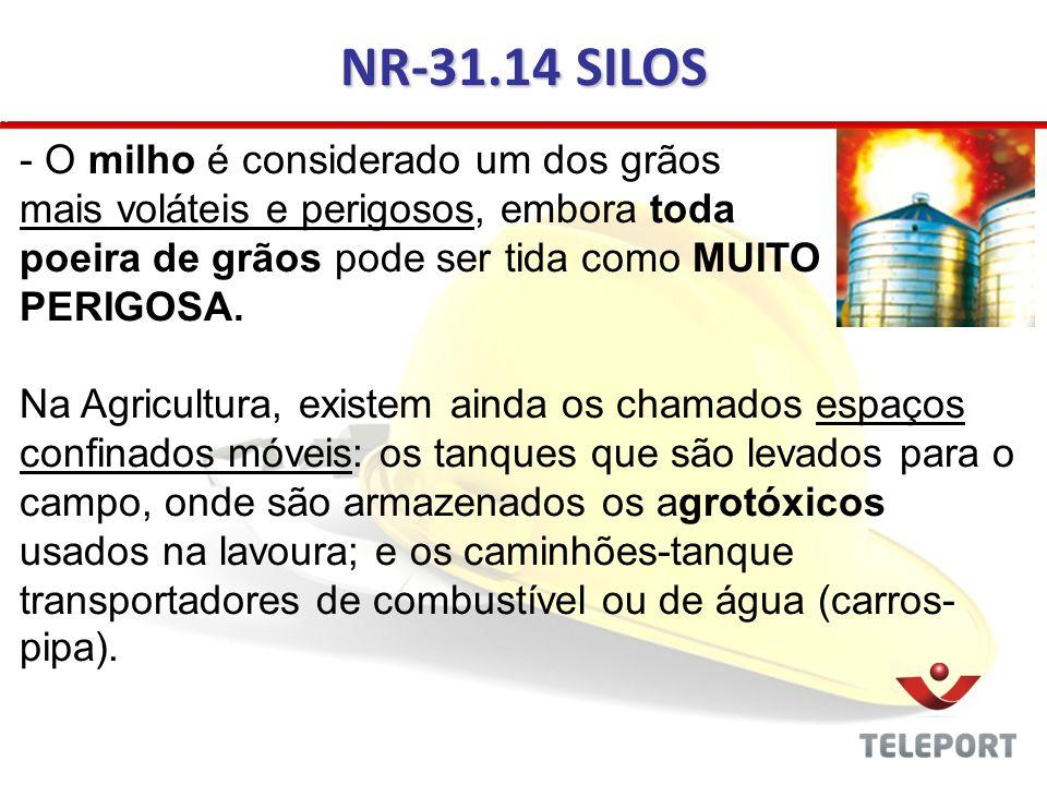 NR-31.14 SILOS O milho é considerado um dos grãos