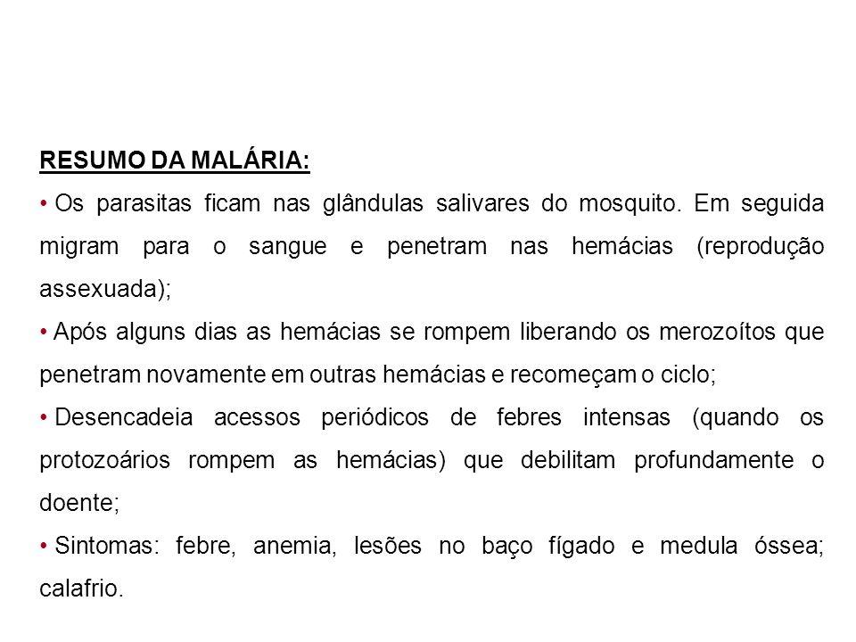 RESUMO DA MALÁRIA: