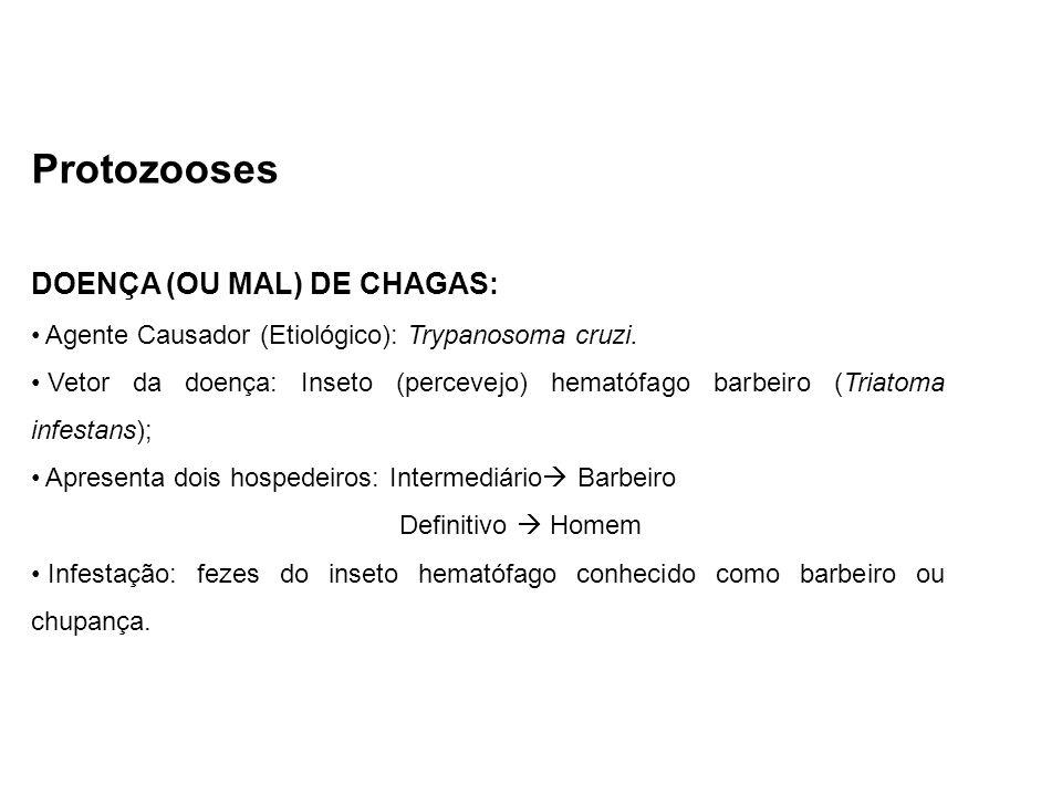 Protozooses DOENÇA (OU MAL) DE CHAGAS: