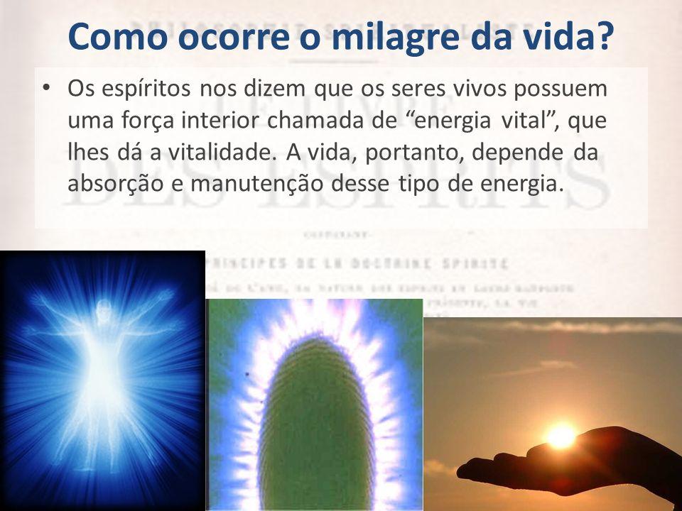Como ocorre o milagre da vida